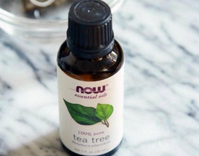 1429060210 tea tree oil for hair