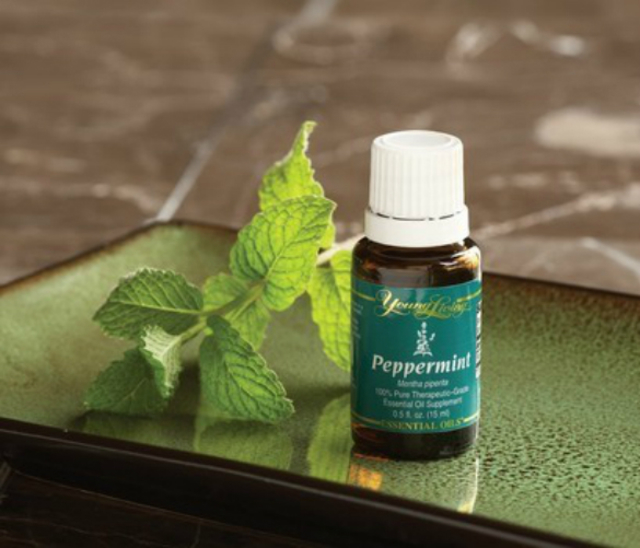 1429060331 peppermint oil natural hair care product