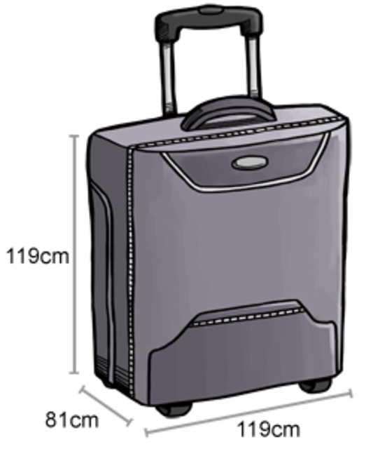 1430116413 baggage checked baggage 18