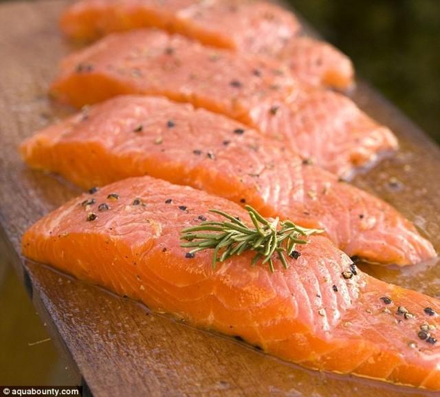 1430905563 salmon 04