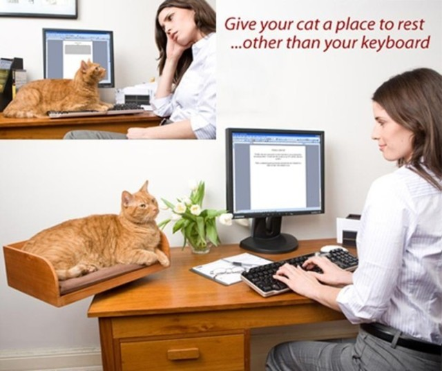 1431791670 kitt in box 1 e1359246754422