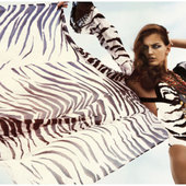 Icon 1431402776 patternity zebraspread greg kadel