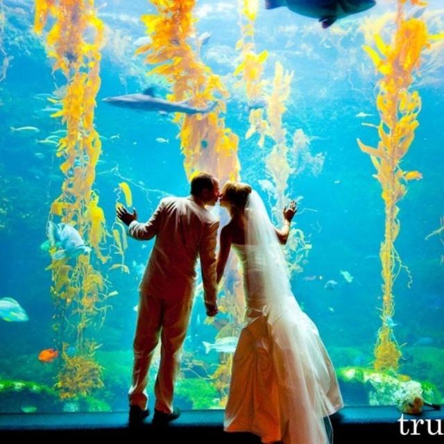 6 สถานที่จัดงานแต่งงานสุดเก๋ !